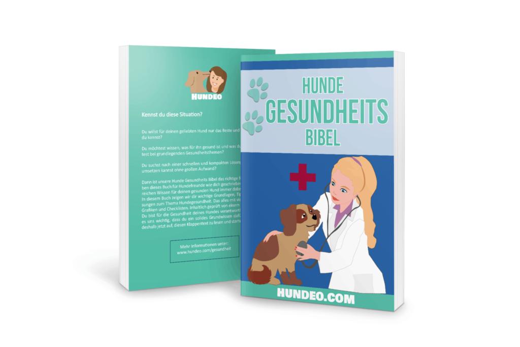 Hunde Gesundheits Bibel (Unsere Erfahrungen) 2